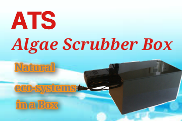 ATS-algae scrubber box